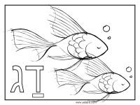 דגים ציור