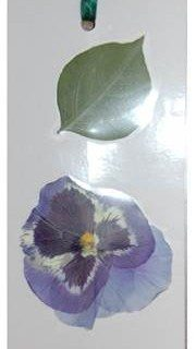 סימניה לספר עם פרחים מיובשים