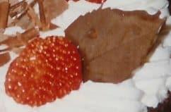 עלי שוקולד