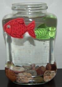 אקווריום עם דגים שלא צריך להאכיל