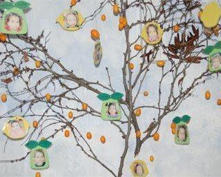 יצירה בגן ילדים | עץ עם פירות חורף ותמונות של הילדים